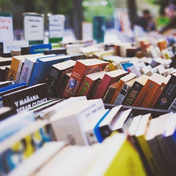 Filas de libros.